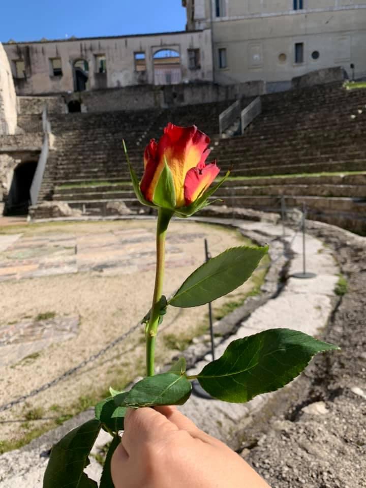 Una rosa e un racconto